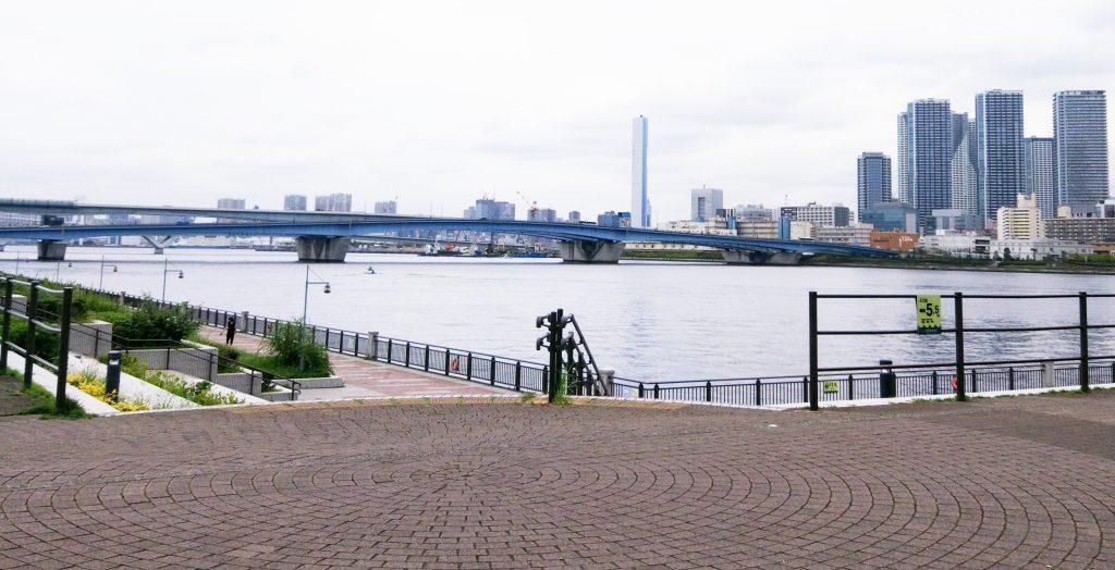 豊洲公園 風景